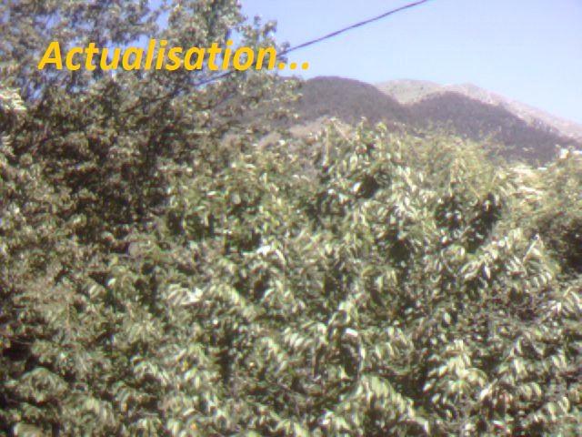 Prise de vue sur le mont Archas
